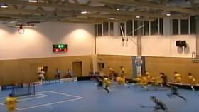 Zřícení střechy sportovní haly v České Třebové