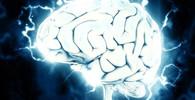Jíte tučná jídla? Podle vědců vám mohou vlézt na mozek, doslova - anotační obrázek