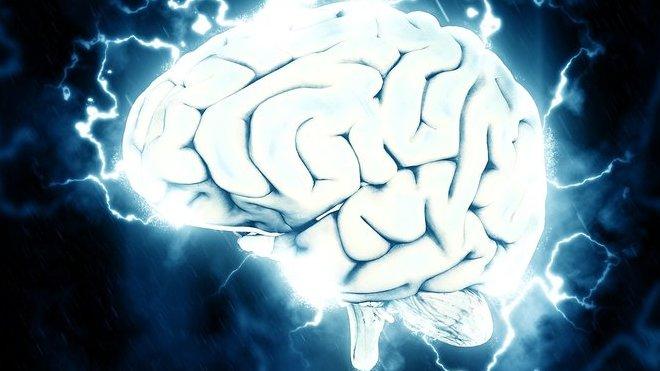 Mozek, ilustrační foto