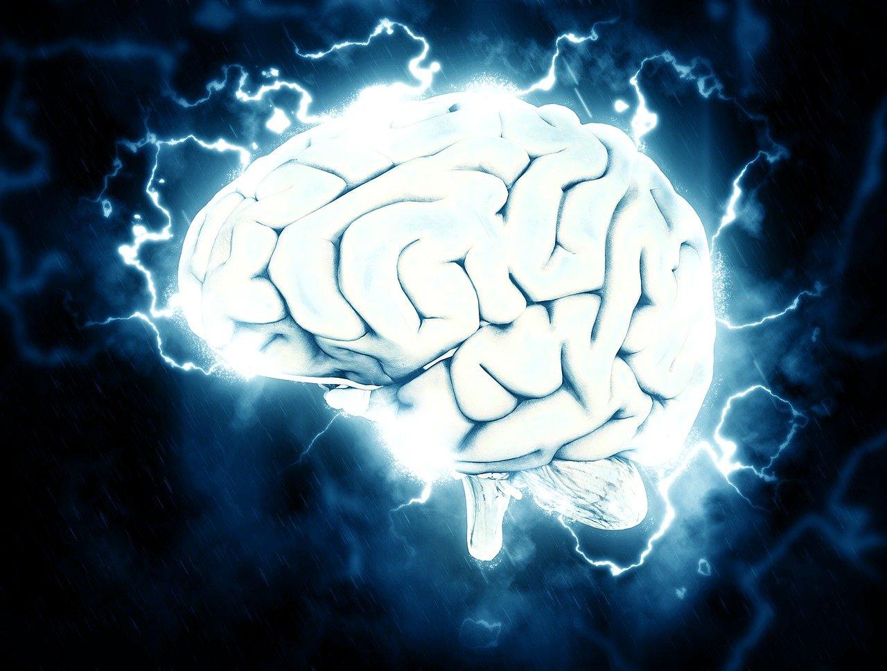 Výsledek obrázku pro mozek jako diamant