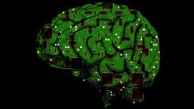 Může lidský mozek požírat sám sebe? Vědci jsou v šoku, hrozí nám velké problémy - anotační foto