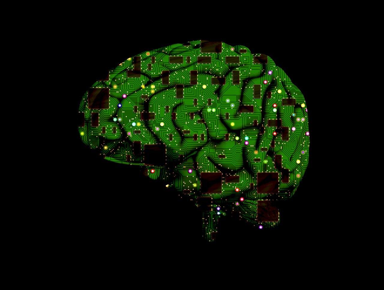 Může lidský mozek požírat sám sebe? Vědci jsou v šoku, hrozí nám velké problémy - anotační obrázek
