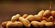 Budou se moci alergici normálně najíst? Vědci jsou na stopě novému objevu - anotační obrázek