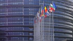 Eurovolby 2019: Nejsilnější frakce v EP oslabí, posílí zelení a populisté - anotační foto