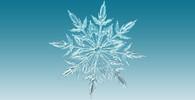 Pravda o sněhových vločkách. Opravdu neexistují na celém světě dvě stejné? - anotační obrázek