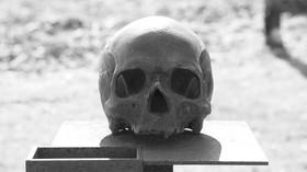 Kanibalismem lze získat vzpomínky snědeného? Nový objev odhalil nečekané věci - anotační foto