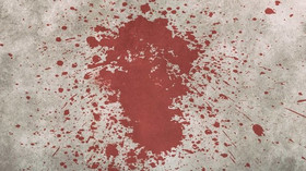 Povedení příbuzní: Rodinné vztahy se mohou zvrtnout v pořádně brutální a krvavou lázeň - anotační foto