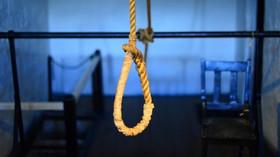 Poprava oběšením: Proč jde o jeden z nejhorších způsobů smrti? - anotační foto