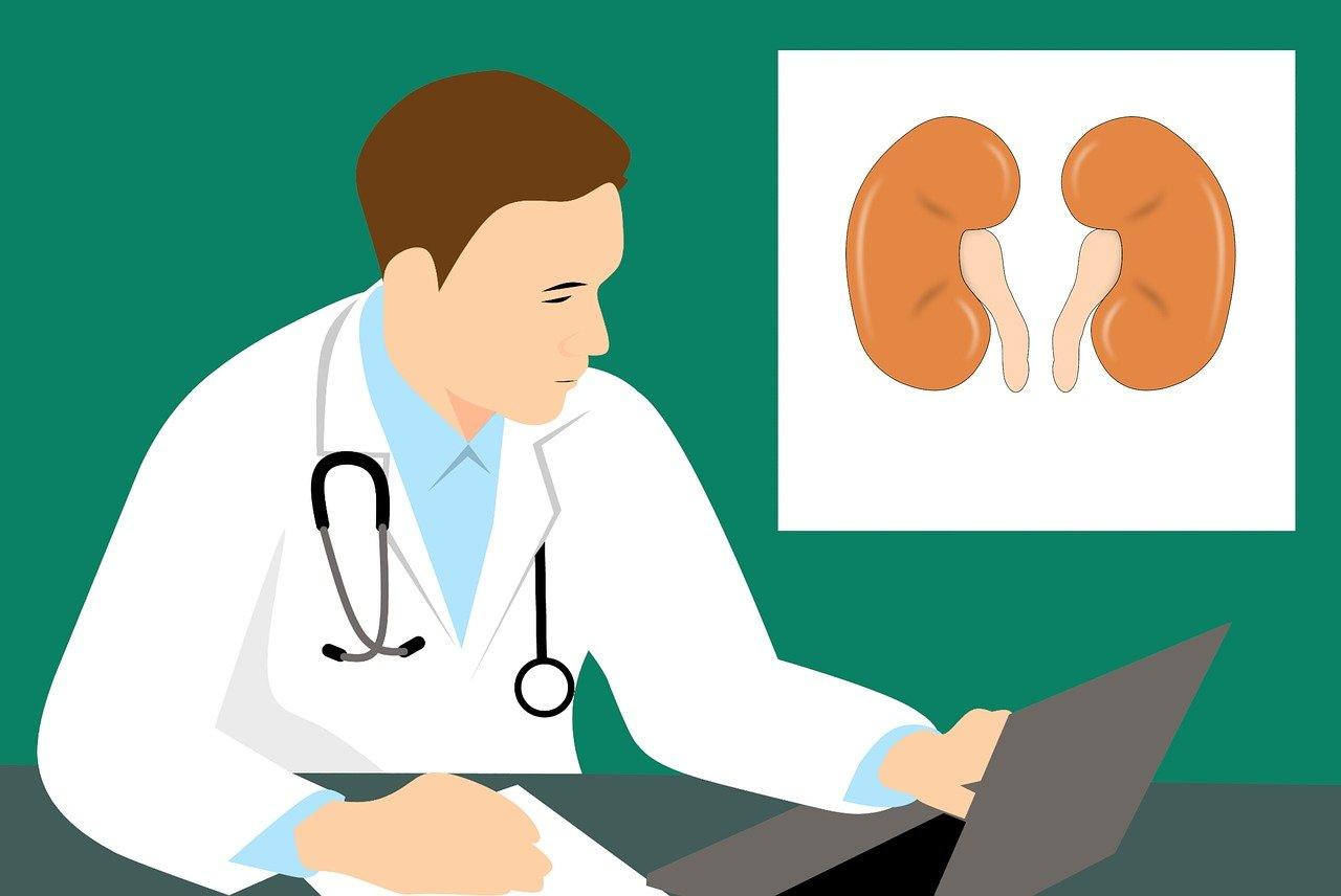 Nemocné ledviny? Tyto příznaky rozhodně nepodceňujte