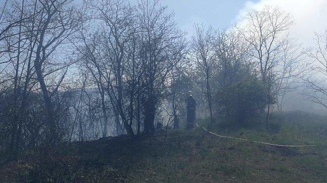 Hasiči likvidují lesní požár u Prahy