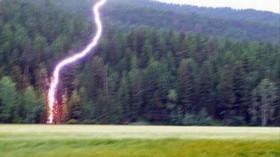 Co se stane, když uhodí blesk? Strom roztrhá na třísky