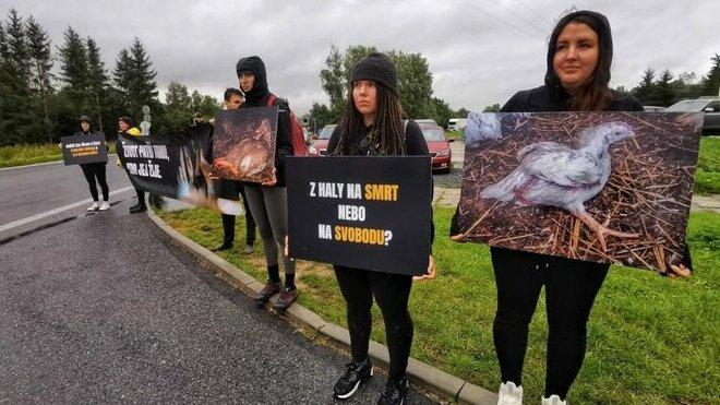 Aktivisté brání vjezdu do areálu jatek v Mirovicích na Písecku